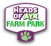 Heads Of Ayr Farm Park Promo Codes